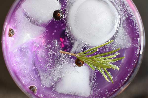 Gin Tonic - der Klassiker